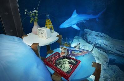 Номер в Париже по соседству с акулами