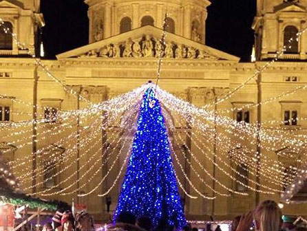 Самые необыкновенные праздничные елки 2015-2016 года